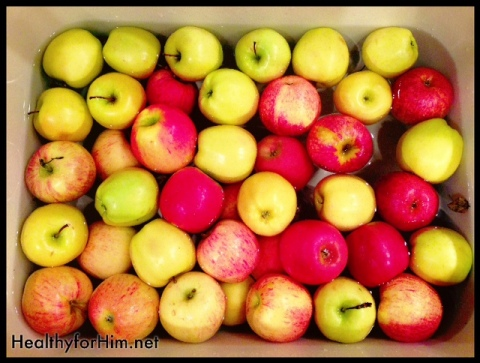 Delicious organic apples - apples are one of the dirties on the list of pesticide filled fruits!  We always buy organic and then soak them in a sink of cold water and 1/4 of white vinegar for 20 minutes.  A perfect ready to go snack!