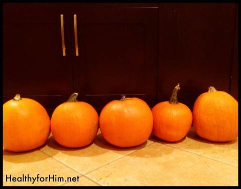Each year after the pumpkin patch trip, each child brings home a pumpkin.  They usually sit for decoration and rot.  Not this year!