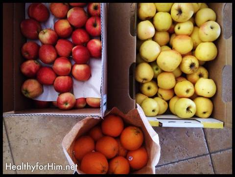 One of the things we get from our food-coop is fruit in bulk!  So thankful for the option!  We eat a lot of apples!!  An apple a day... keeps the doctor away!